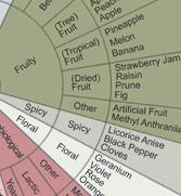 The Wine Flavor Wheel